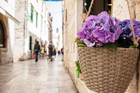 Flowers at the beginning of spring in the beautiful alleys of the old town of Dubrovnik