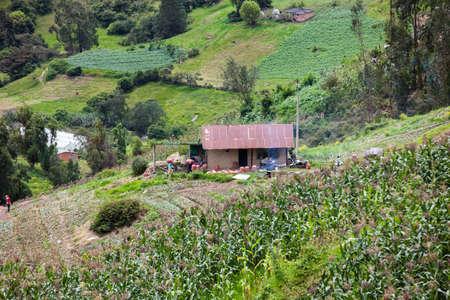 Farmers harvesting potatoes on farmland in the Department of Boyacá in Colombia 写真素材