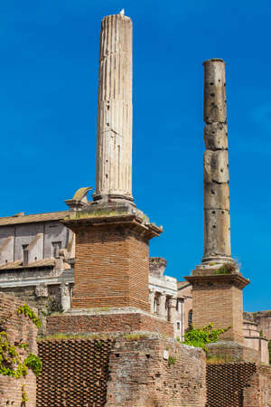 Honorary Columns at the Roman Forum in Rome