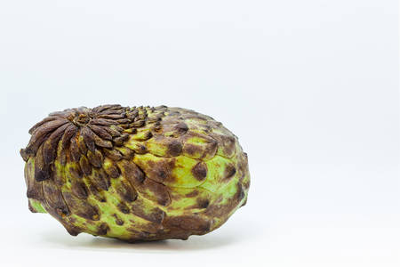 Ripe custard apple or sugar apple fruit isolated in white background