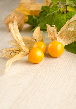 cape gooseberry: Ripe physalis on white wooden background. Physalis fruit closeup