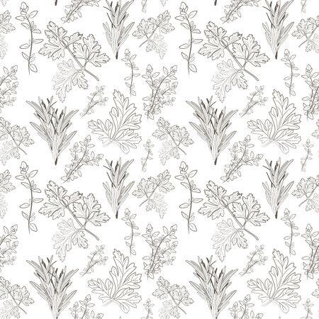 herbes: Vector fresh parsley, thyme and rosemary herbs. Aromatic leaves used to season meats, poultry, stews, soups, Bouquet granny. Seamless pattern