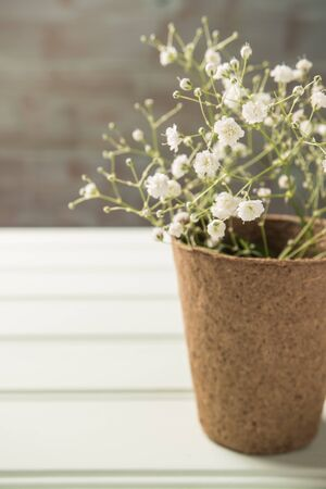 A bouquet of gypsophila flowers on the wooden table. Vintage style image. Copy space Stock Photo