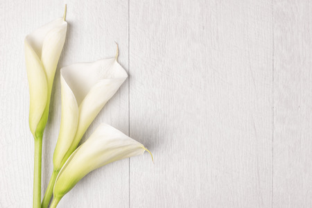 with sympathy: Elegant spring flower, calla lily on rustic wooden table. For wedding background image.