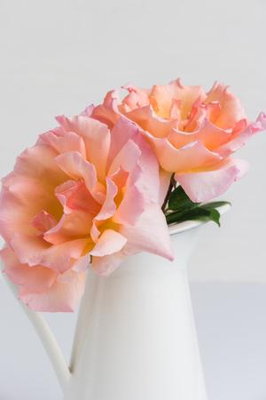 Fresh bunch of pink roses flowers in the jar pastel floral fresh bunch of pink roses flowers in the jar pastel floral wallpaper background from flower mightylinksfo