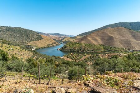 Viewpoint of Vargelas allows to see a vast landscape on the Douro and its man-made slopes. Douro Region, famous Port Wine Region, Portugal Zdjęcie Seryjne