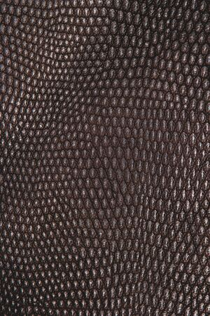 Leather texture background. Leather for fashion, furniture. Leather pattern with copy space for text or image.