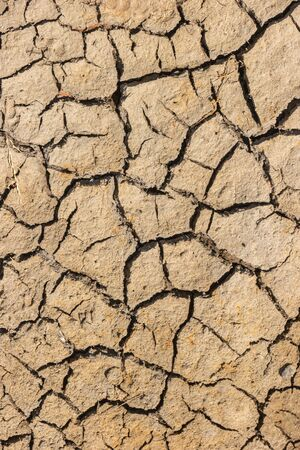 Part of a huge area dried land suffering from drought - in cracks. Dry water reservoir. Natural drought concept: dried cracked earth soil ground texture background.