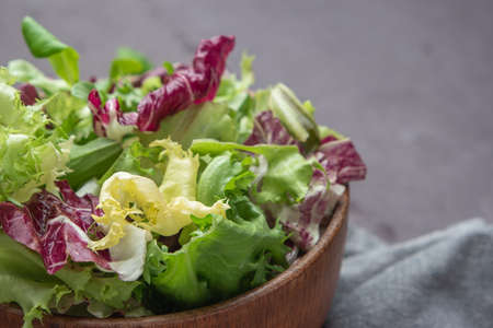 Salad mix leaves background. Fresh salad pattern with rucola, purple lettuce, spinach, frisee and chard leaf