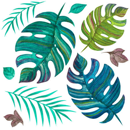 Tropical plants. Leaves. Green jungle. Watercolor set to create images. For printing cards, beautiful fabric, wedding invitations.