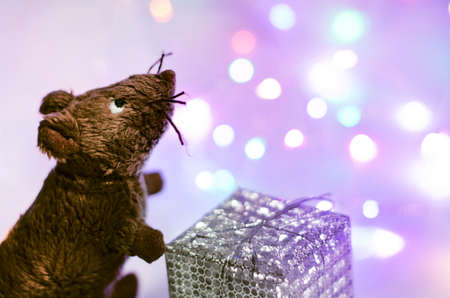 The toy mouse holds a gift. New Year 2020. In the background a garland glows. Bokeh Blur Soft focus. Neon colors. Copy spase.