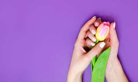 Female manicure on a bright background. Purple