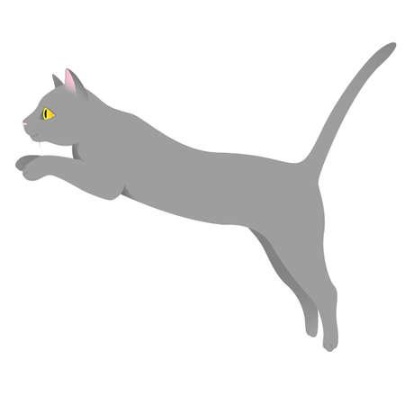 Gray purebred cat with yellow eyes on Illusztráció
