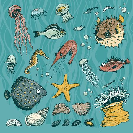 dorado: Sea life set