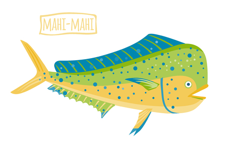 Mahi-mahi, vector cartoon illustration Illustration