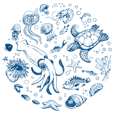 bubble sea anemone: Sea life hand drawn set