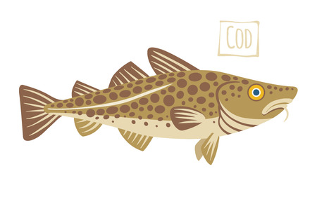 Cod, cartoon illustration Иллюстрация