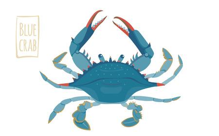 Blauwe krab, vector cartoon illustratie