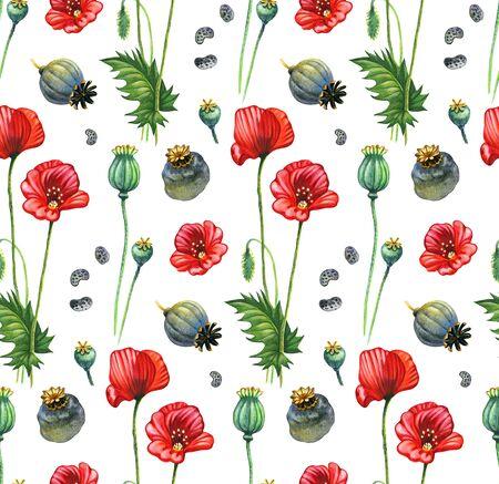 opium poppy: Poppy handpainted seamless pattern