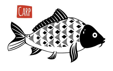 crucian: Carp, vector illustration, cartoon style