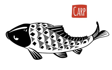 susi: Carp, vector illustration, cartoon style
