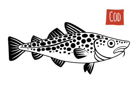 susi: Cod, vector illustration, cartoon style Illustration
