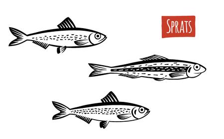 Sprats, illustrazione vettoriale, stile cartone animato