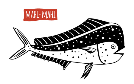 Mahi-mahi, vector illustration, cartoon style