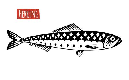 Aringa, illustrazione vettoriale, stile cartone animato