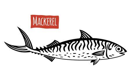 mackerel: Mackerel, vector illustration, cartoon style