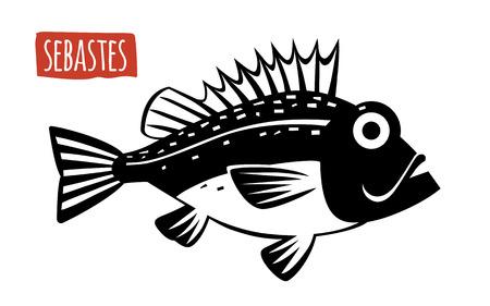 susi: Sebastes, vector illustration, cartoon style