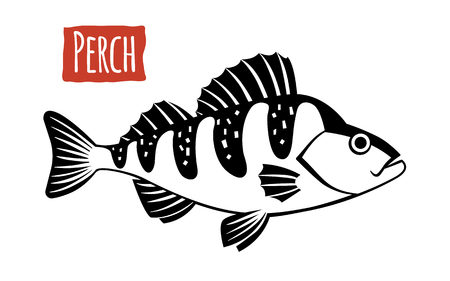 Perch, vector illustration, cartoon style Ilustracja