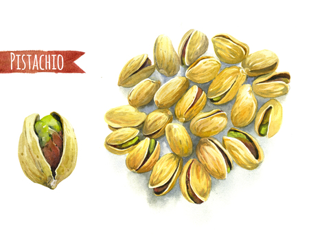 Pistachio isolated on white, hand-painted watercolour illustration Banco de Imagens