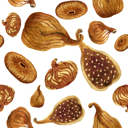Seamless pattern of dried figs painted with watercolour on white background