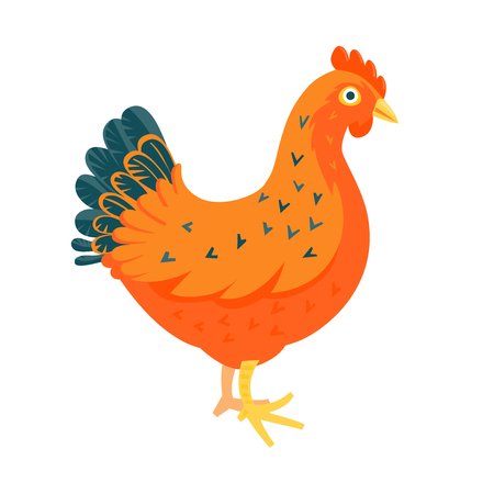 domestic animals: Red chicken funny vector illustration cartoon style