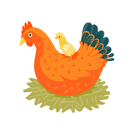 incubation: Red chicken in nest with a yellow chick vector illustration cartoon style Stock Photo