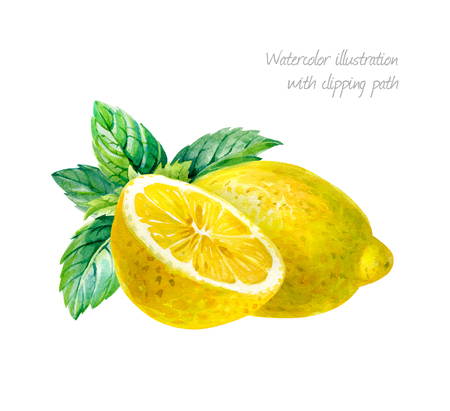 limon: Lemon whole and half with mint leaves isolated on white background watercolor illustration Stock Photo