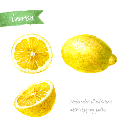 Lemon whole and sliced isolated on white background watercolor illustration