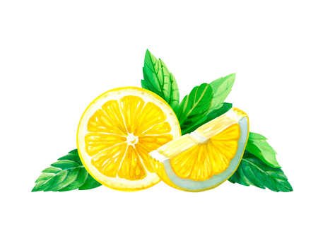 limon: Lemon slices with mint leaves isolated on white background watercolor illustration with clipping path included Stock Photo