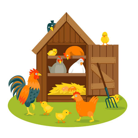 Henhouse with funny birds on a green lawn vector illustration cartoon style