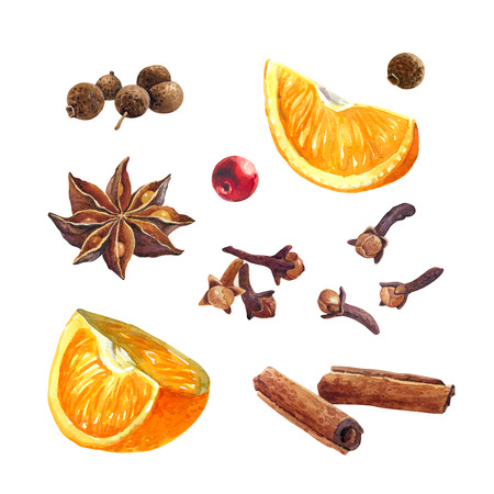 Watercolor illustration of oranges, badiam, pimenta, cinnamon and cloves isolated on white background with clipping paths included