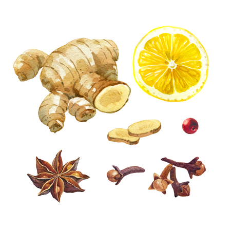 Watercolor illustration of lemon, ginger root, badiam,  star anise, and cloves isolated on white background with clipping paths included