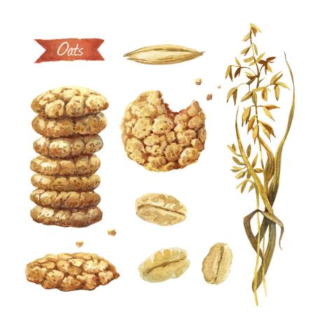 Illustrazione ad acquerello della pianta di avena; semi; fiocchi e biscotti isolati su fondo bianco con i percorsi di ritaglio inclusi Archivio Fotografico - 89122025
