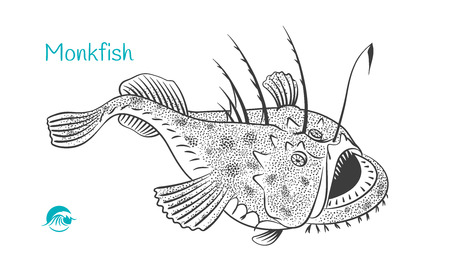 Detailed hand drawn vector black and white illustration of Monkfish