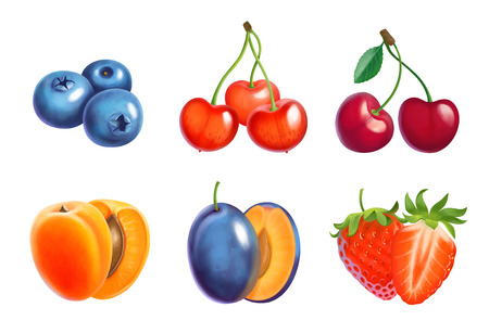 Fruit and berries  illustration