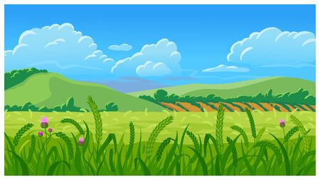 Summer field vector illustration