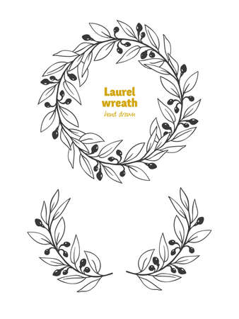 Laurel Bay leaves, branches and fruits detailed hand drawn vector black and white illustration Ilustrace