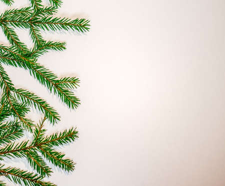 closeup: Green fir branches isolated on white background - New Year and Christmas theme Stock Photo