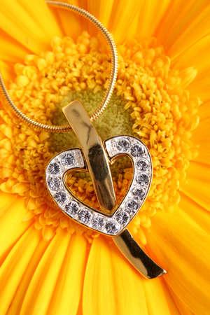 knickknack: Gold heart pendant on flower background.