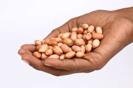 Hand with peanuts isolated on white  photo